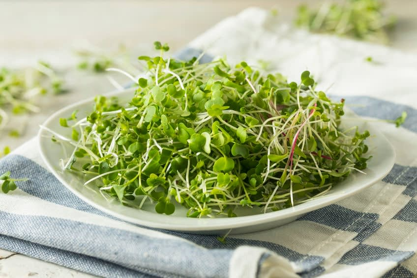 The Power Of Mini Greens